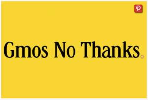 OGM non merci